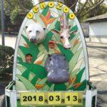 【お知らせ】と上野動物園♡