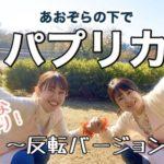 【動画配信】パプリカ第二弾!青空の下で♪〜反転バージョン〜