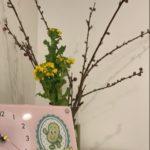 【残席3組】🌸春の桜祭り🌸